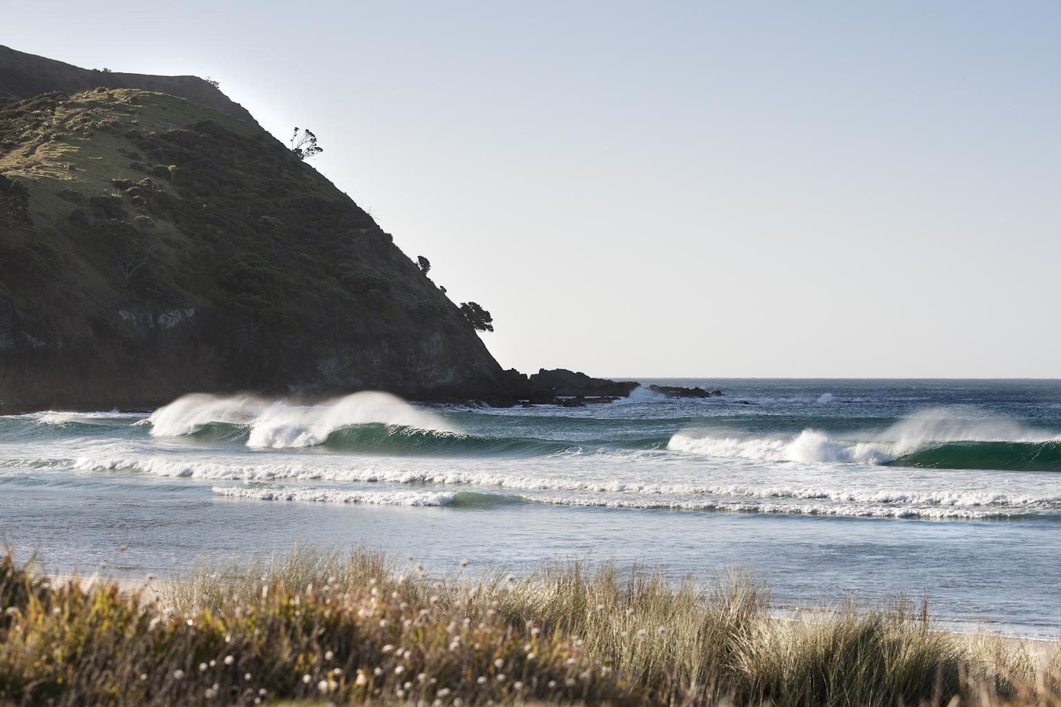 newzealand_nikon_1832_1 (1)