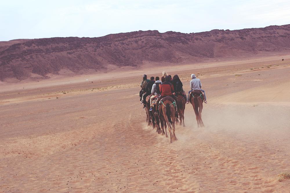 19_desert surf berbere